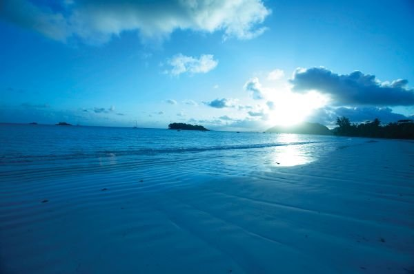 Paradise Sun 27