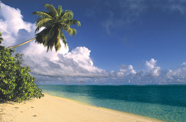 Alphonse Island Resort 23