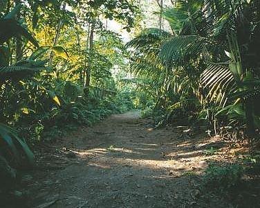 Taj Denis Island 6