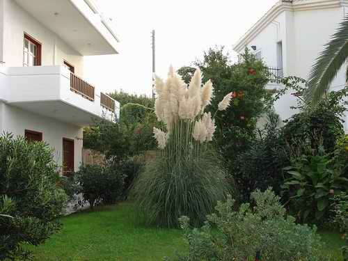 Alexandros Hotel Crete 9