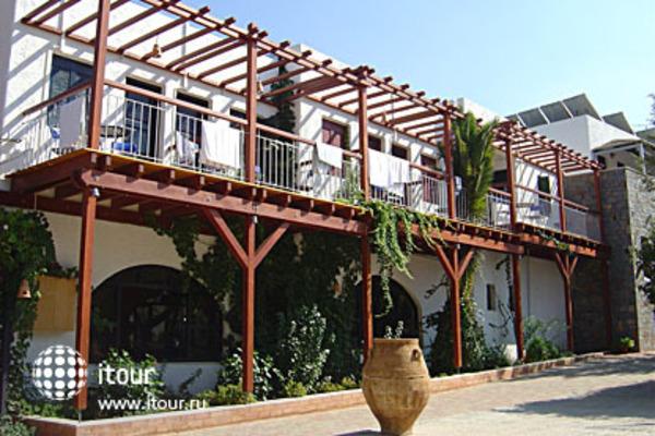 Kalypso Hotel Bungalows 4