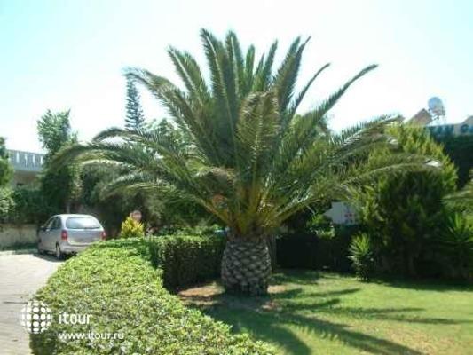 Cretan Garden 2