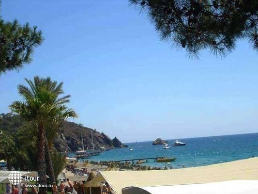 Louis Creta Paradise 5