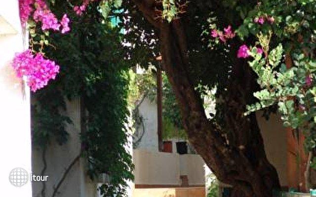 Kalimera Village 6