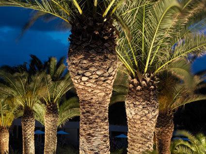Kernos Beach Hotel & Bungalows 6