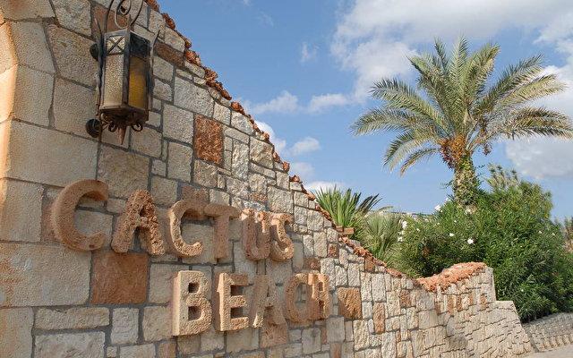 Cactus Beach 1