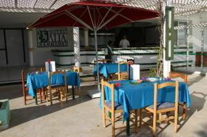 Hotel Dalia  7