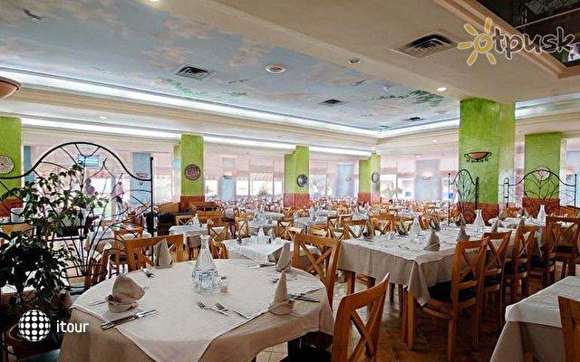 Novostar Palmyra Resort 2