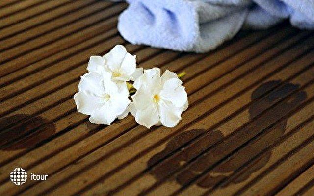 Olea - Salvia Depadance 5