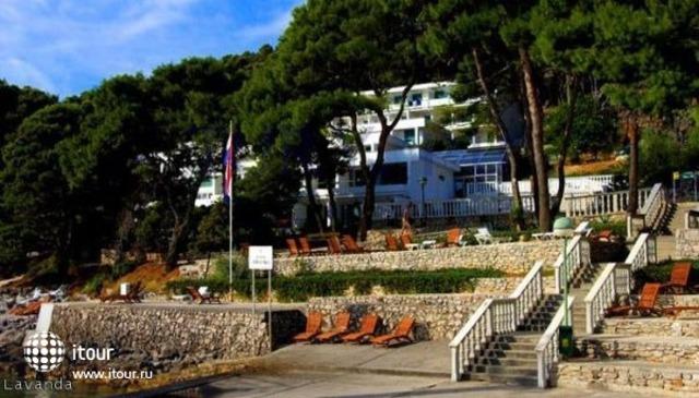 Lavanda Zadar 2