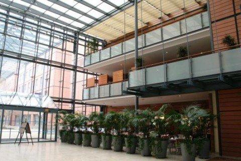Hilton Lyon 9