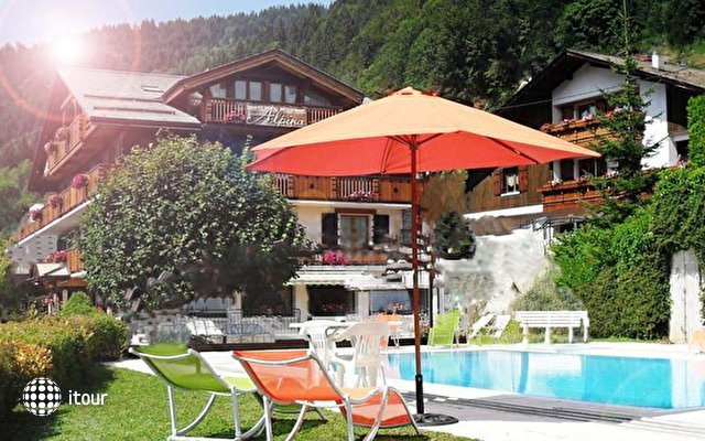 Chalet Hotel Alpina 7