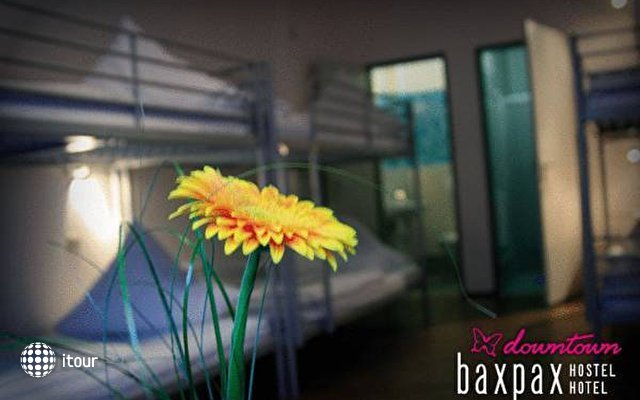Baxpax Downtown Hostel 7