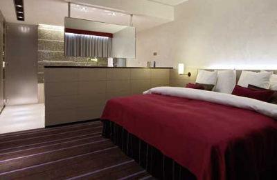 Radisson Sas Scandinavia Hotel 6