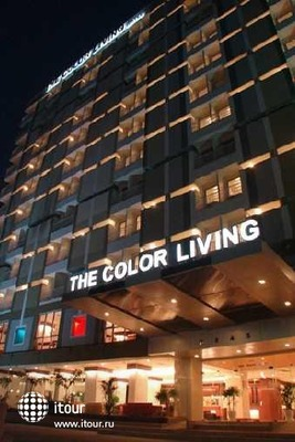 The Colour Living 2