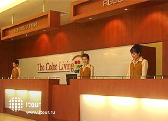 The Colour Living 8