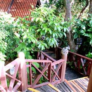 Kata Garden  3