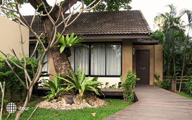 Phuket Island View 6
