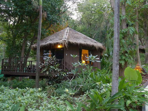 Baan Krating Jungle Beach 3