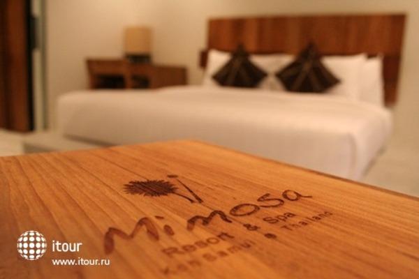 Mimosa Resort & Spa 7