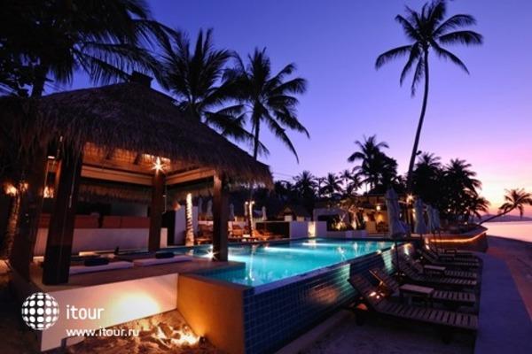 Mimosa Resort & Spa 2