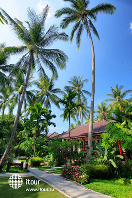Baan Chaweng Beach Resort & Spa 10