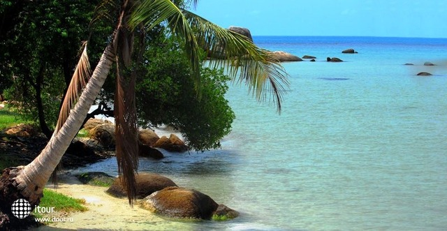 Cinnamon Beach 2