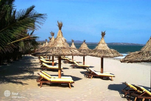 Coco Beach 3