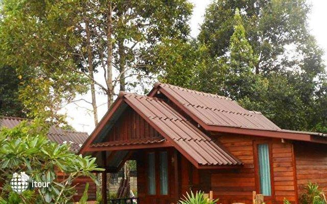 Orange Tree House 6