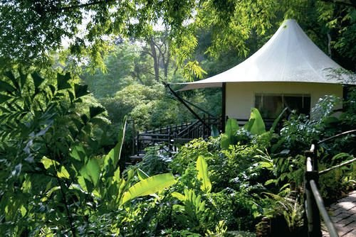 Four Seasons Tented Camp Golden Triangle 7