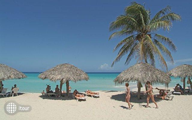 Gran Caribe Tortuga 4