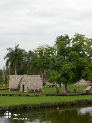 Guama 3