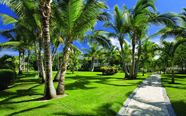 Catalonia Bavaro Beach, Golf & Casino Resort 4