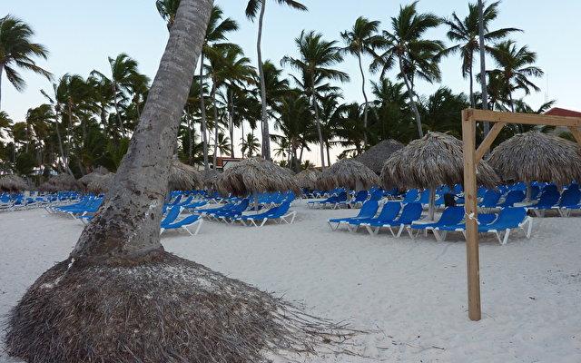 Dreams Palm Beach 8