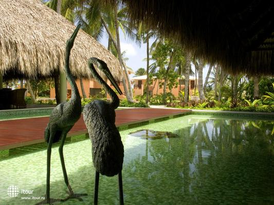 Sivory Punta Cana 4