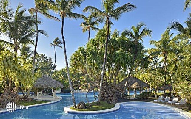 The Village At Paradisus Punta Cana 59