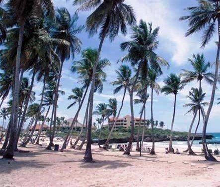Tropical Dream Island Beach Resort 2
