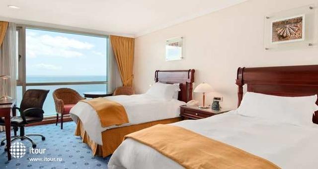 Hilton Santo Domingo 3