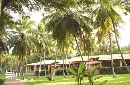 Grand Paradise Samana 7
