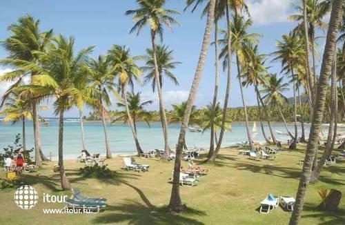 Grand Paradise Samana 8