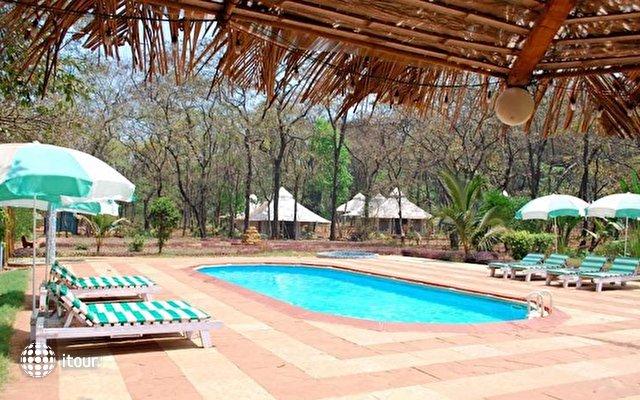 Dudhsagar Spa Resort 9