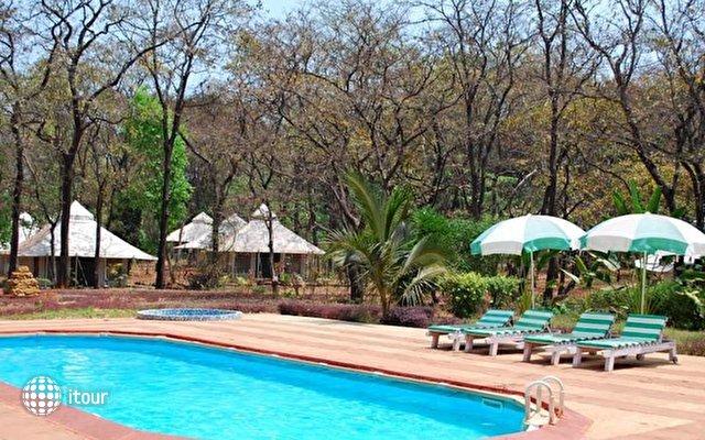 Dudhsagar Spa Resort 8