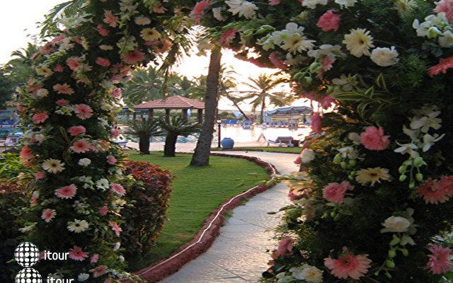 Holiday Inn Resort 5