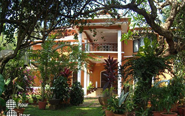 Casa Aleixo 3