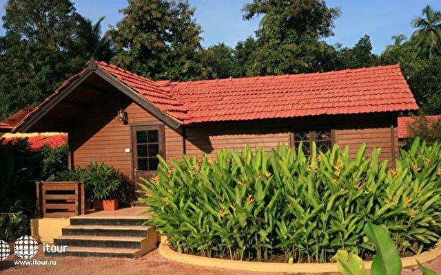 The Fern Gardenia Resort 9