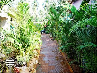 Morjim Beach Resort 4