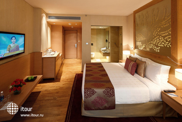 Radisson Blu Hotel New Delhi Dwarka 3