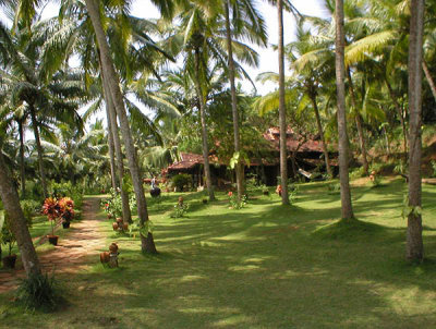 Somatheeram Ayurvedic Beach Resort 2