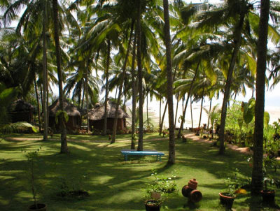 Somatheeram Ayurvedic Beach Resort 4