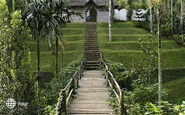 Shalimar Spice Garden 4